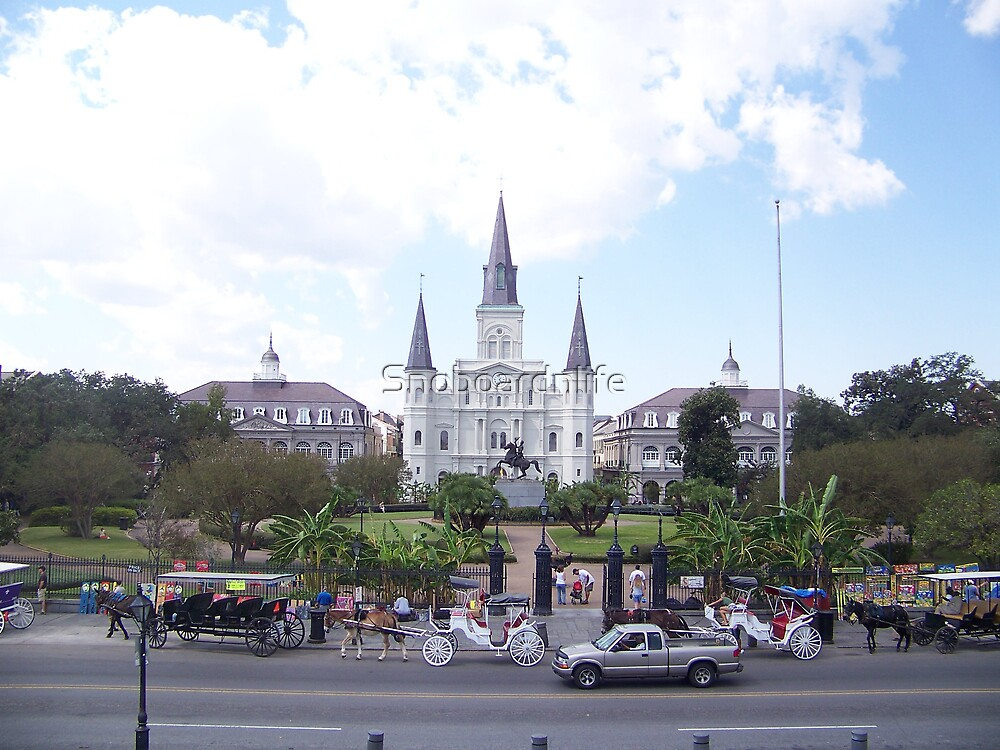 Jackson Square Cathedral by Snoboardnlife