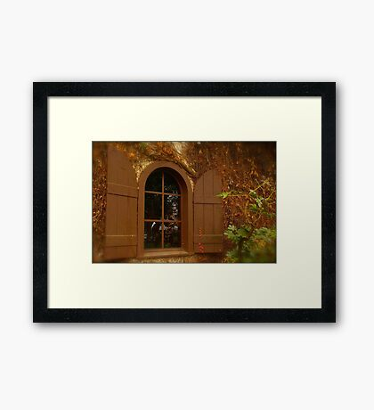 Window and Shutters Framed Print
