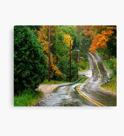 Rain on A Country Road Canvas Print