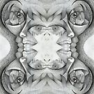 Mirrored drawing 5. stupid.. by Andrew Nawroski