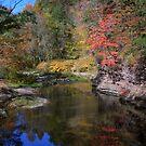 Sugar Creek Reflections by DMWilliams