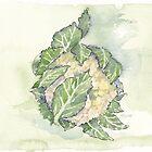 Delicious Cauliflower - Botanical by Maree Clarkson