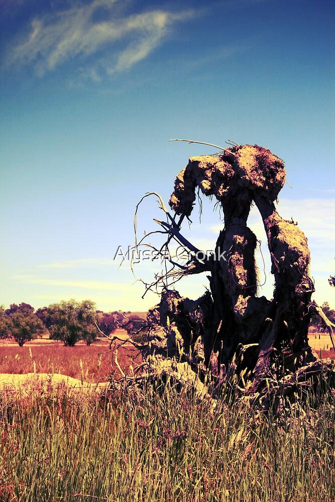Stump by Alyssa Passlow