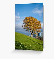Tree In Autumn Colors | Roosevelt Island, New York Greeting Card