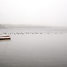 A lone day sailer in the fog by Debra Fedchin
