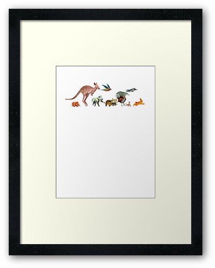 Australian animals 2 by David Fraser