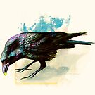 Crow by biev