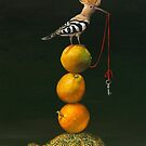 Pyramid with Hoopoe.  Prints on Premium Canvas. by Irena Aizen
