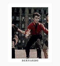 BERNARDO. Photographic Print
