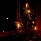 lighting the dark by jayview
