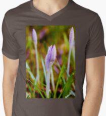 Saffron crocus Men's V-Neck T-Shirt