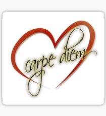 """Carpe Diem"" by Tony DuPuis Sticker"