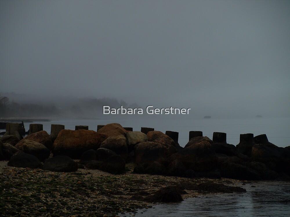 Foggy day by Barbara Gerstner