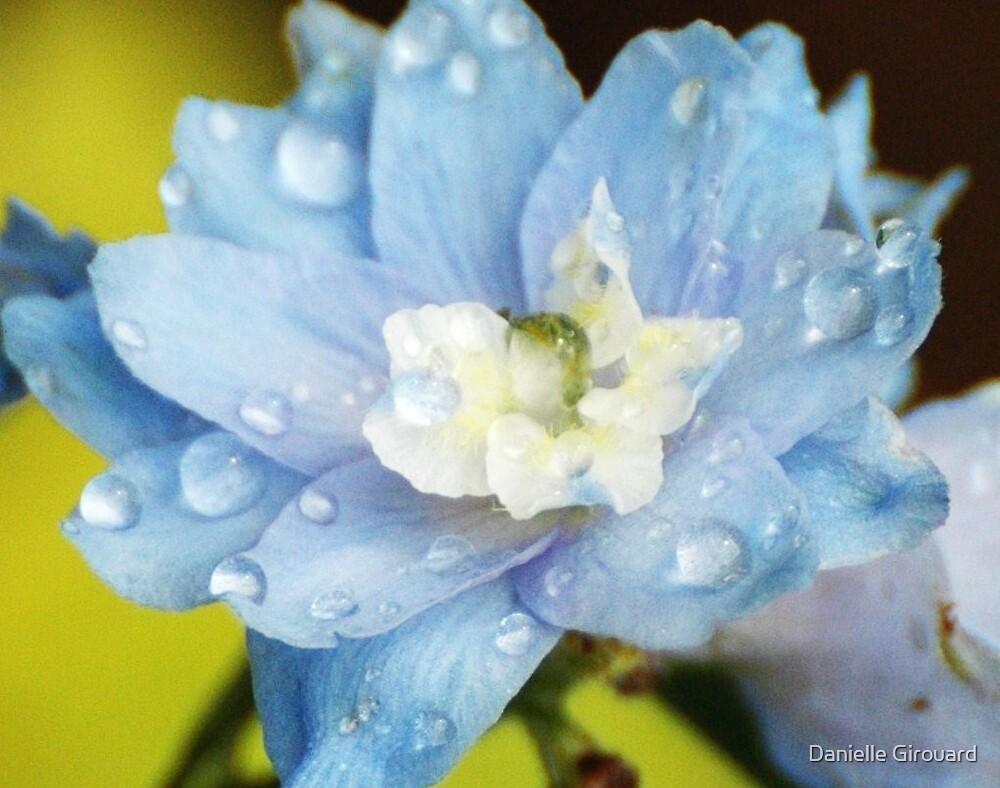 Blue Rain by Danielle Girouard