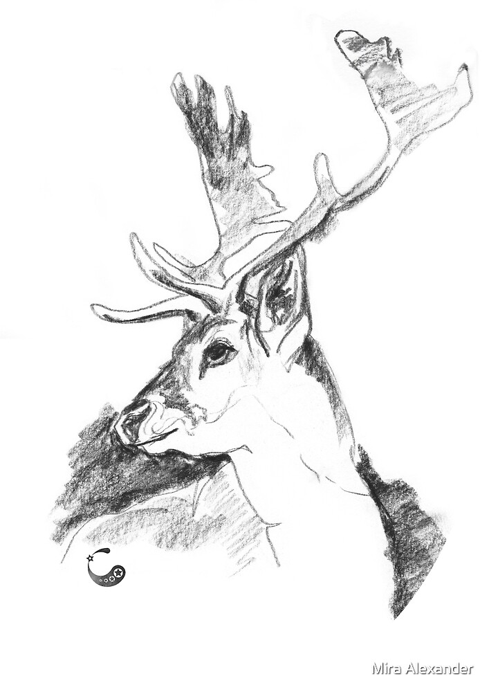 Deer, Head (Sticker) - Charcoal Animals by Mira Alexander