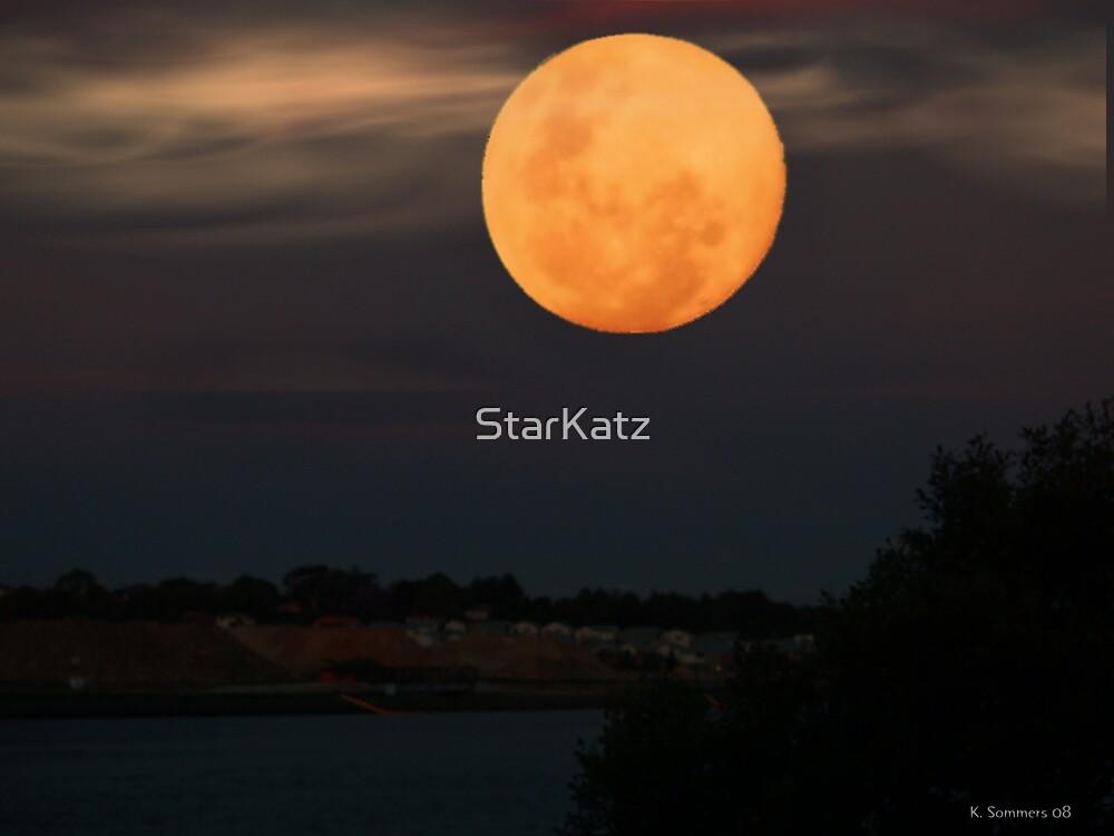 Night Sky In Sydney by StarKatz