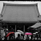 Autumn in Japan:  Colors in the Rain by Jen Waltmon