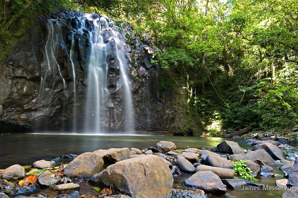 Ellinjaa Falls 1 by James  Messervy