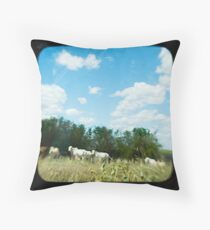 Brahman Cattle Throw Pillow