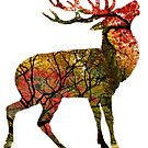 Autumnal Stag by MissElaineous Designs