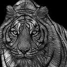 Dream Tiger  by Bobby McLeod