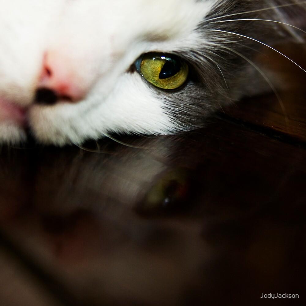 Cats eye,... by JodyJackson