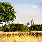 Frankfurt Skyline NiddaPark summer by marychaco