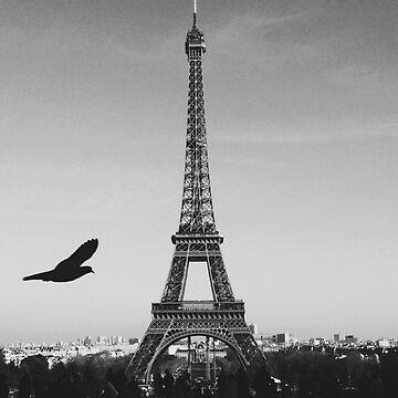Eiffel Tower - Eiffel Tower by Xymota