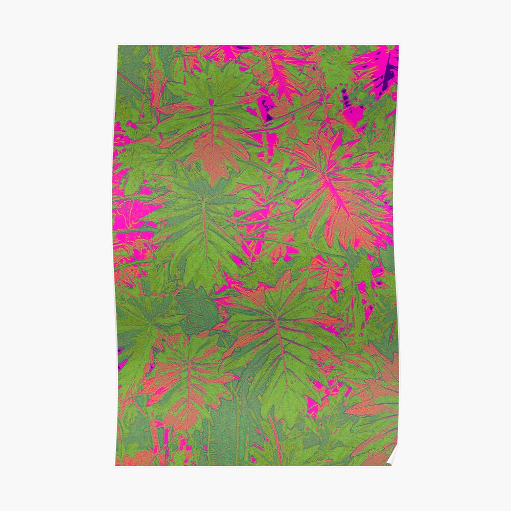 Hot Pink Nature Poster