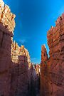 Bryce Canyon Walls by photosbyflood