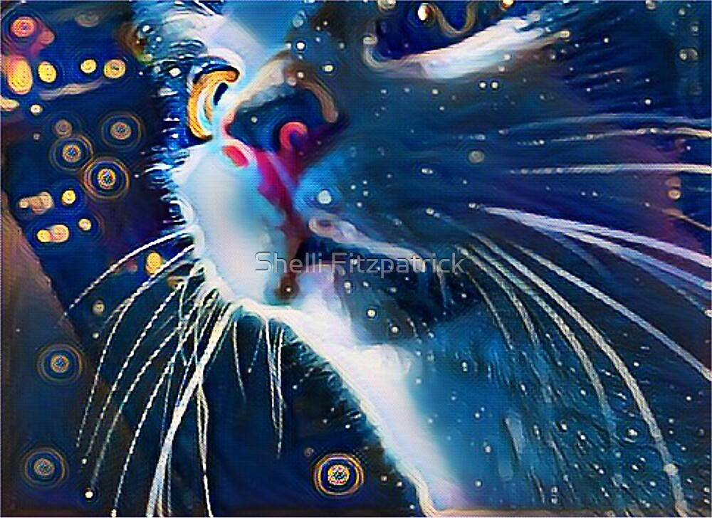 Night Prowler, Abstract cat after dark. by Shelli Fitzpatrick