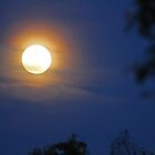 Bald Moon Rising by Chet  King