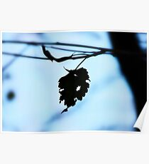 Silhouette of lonely leaf Poster