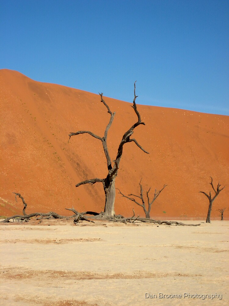 Deadvlei, Namib Desert, Namibia by Dan Broome Photography