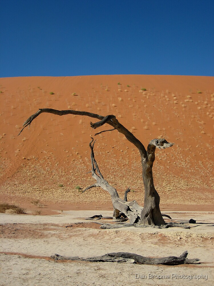 Deadvlei, Namib Desert, Namibia 2 by Dan Broome Photography