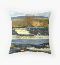 Here be Monsters Throw Pillow