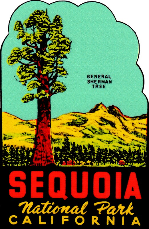 Quot Sequoia National Park California Vintage Travel Decal