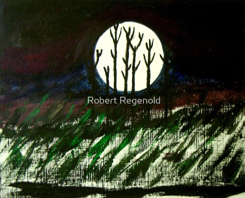"""""""Winter's Full Moon"""" by Robert Regenold"""