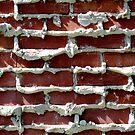 bricks by Nicole M. Spaulding