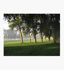 Tranquil summer mist Photographic Print