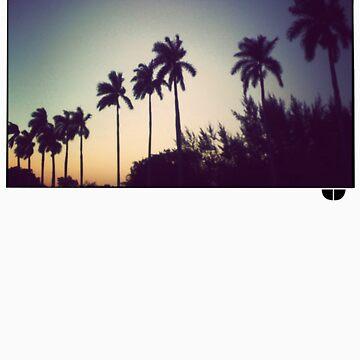 florida palms by crumpy06