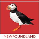 Newfoundland and Labrador - Atlantic Puffin by grainnedowney