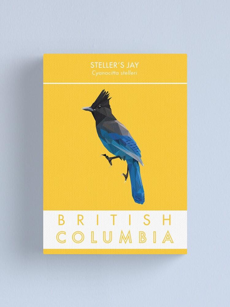 Alternate view of British Columbia - Stellar's Jay Canvas Print