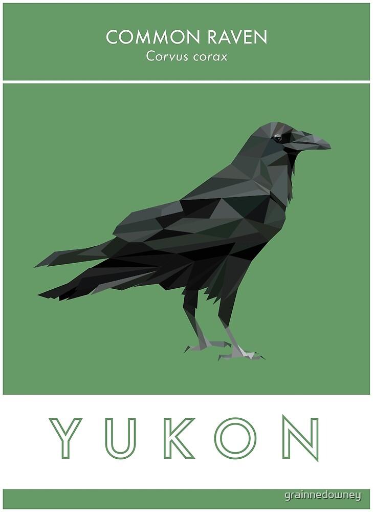 Yukon - Common Raven by grainnedowney