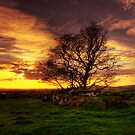 Loughmacrory Wedge Tomb  by doublevision