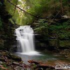 Big Falls in September Rain by Gene Walls