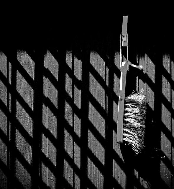 The Brush by Alexandra Lavizzari
