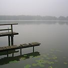 Misty magical lake by knomz