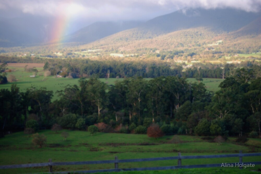 The Yarra valley near Melbourne, Australia by Alina Holgate