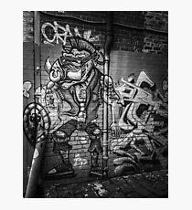 Street art 6 Photographic Print